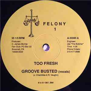 Too Fresh - Groove Busted download mp3