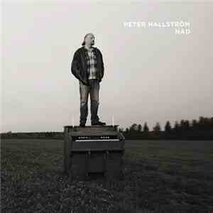 Peter Hallström - Nåd download mp3